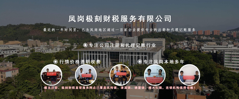 东莞凤岗极刻财税服务有限公司